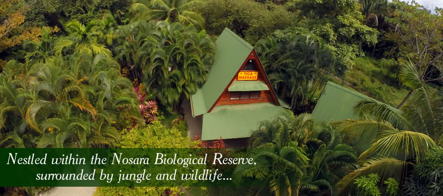 Slide1-jungle-tica-massage